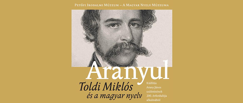 Aranyul – Toldi Miklós és a magyar nyelv